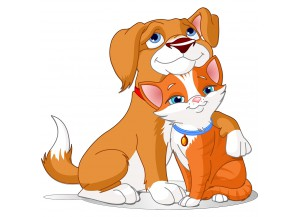 stickers chien et chat