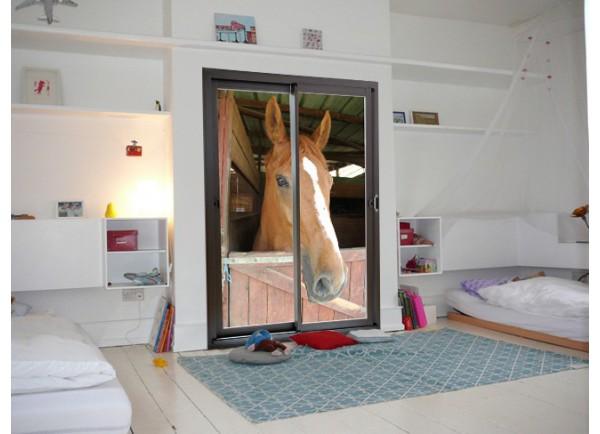 Stickers trompe l'oeil baie vitrée tête de cheval