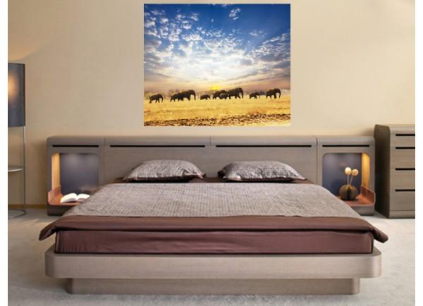 Stickers paysage Les éléphants