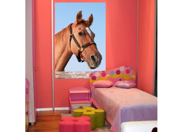 Stickers Portrait de cheval