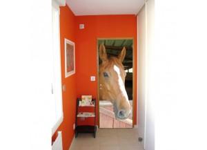Stickers pour porte Tête de cheval