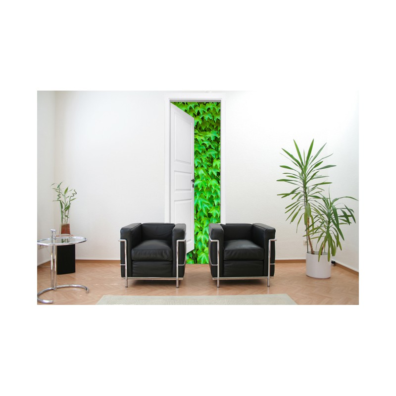 stickers trompe l 39 oeil porte mur de lierre tatoutex stickers. Black Bedroom Furniture Sets. Home Design Ideas