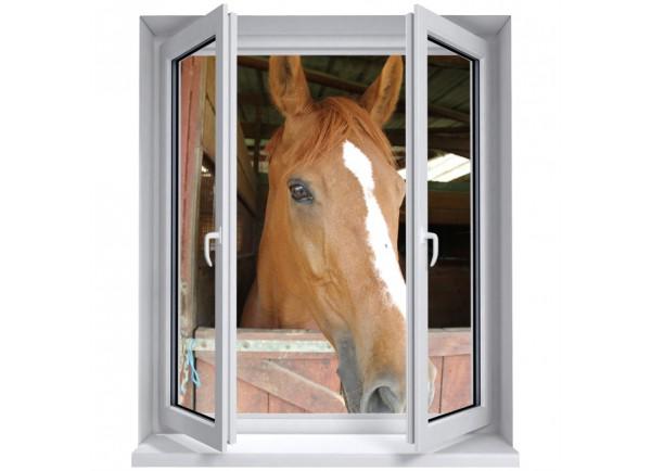 Stickers trompe l'oeil fenêtre le cheval