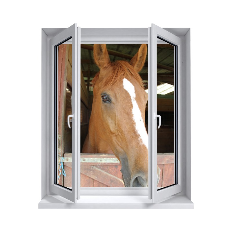 D co stickers fen tre stickers murale trompe l 39 oeil for Poster de porte cheval