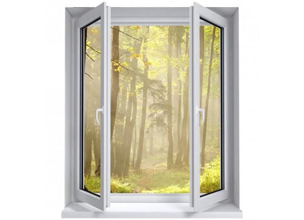 Stickers trompe l'oeil fenêtre Forêt matinale