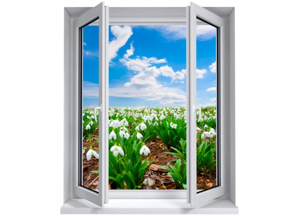 Stickers trompe l'oeil fenêtre champ de fleurs