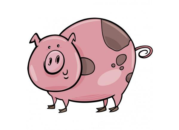 Stickers cochon