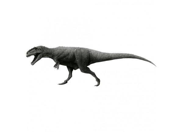 stickers dinosaure tyrannosaurus