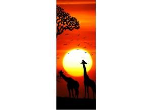 Sticker pour porte Savane africaine couché de soleil